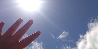 暑い日が続きますがいかがでしょうか?